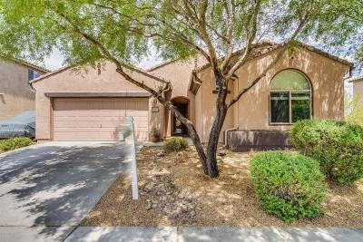 Tucson Single Family Home Active Contingent: 5963 S Moon Desert Drive