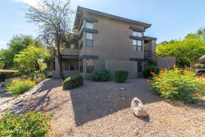 Pima County, Pinal County Condo For Sale: 5855 N Kolb Road #9106