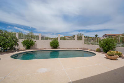 Pima County Single Family Home For Sale: 13791 N Bushwacker Place