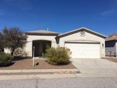 Pima County, Pinal County Single Family Home For Sale: 9959 E Deer Trail