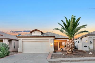 Pima County Single Family Home For Sale: 9289 E Muleshoe Street