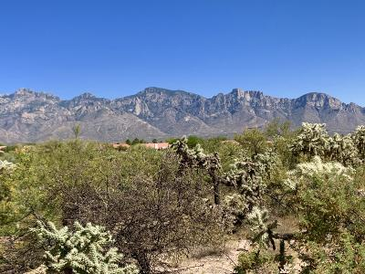 Oro Valley Residential Lots & Land For Sale: 14708 N Quiet Rain Drive #35