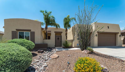 Oro Valley Single Family Home For Sale: 12661 N Rock Creek Road