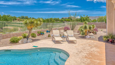 Tucson Single Family Home For Sale: 66272 E Oracle Ridge Road