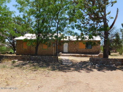 Cochise County Single Family Home For Sale: 4947 W Prince Road