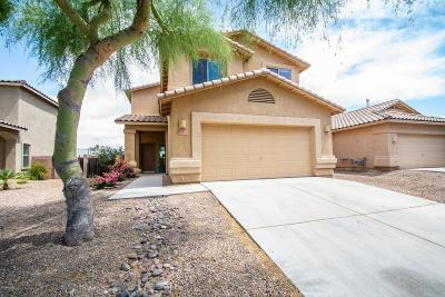 Marana Single Family Home For Sale: 11924 W Fontenelle Drive