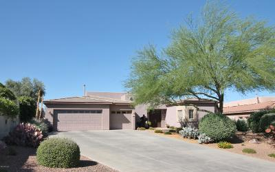 Oro Valley Single Family Home For Sale: 700 W Regulation Place