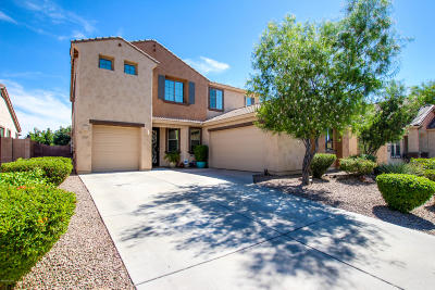 Pima County Single Family Home For Sale: 1245 W Keuhne Court
