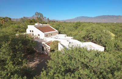 Tucson Single Family Home For Sale: 10036 E El Poso Trail