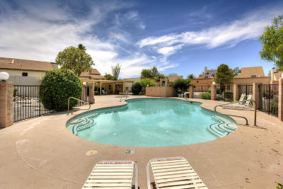 Tucson Single Family Home For Sale: 2812 W Carnation Place