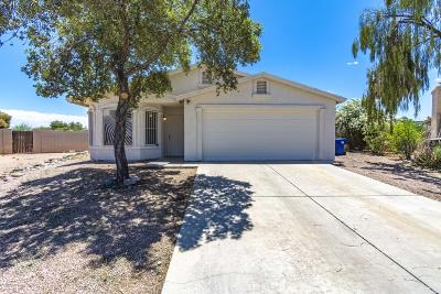Pima County Single Family Home For Sale: 2996 E Placita Baltra