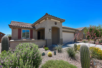 Marana Single Family Home Active Contingent: 6745 W Clear Creek Trail