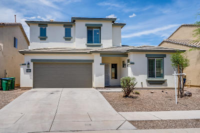 Pima County Single Family Home For Sale: 163 E Camino Limon Verde