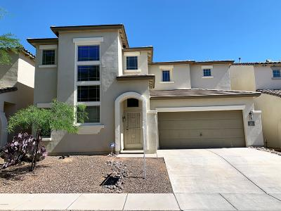 Pima County Single Family Home For Sale: 84 W Camino Rio Chiquito