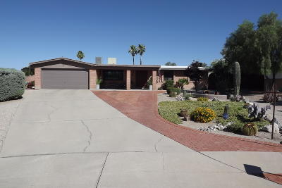 Pima County Single Family Home For Sale: 9881 E Domenic Lane