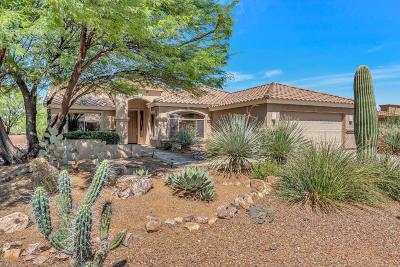 Pima County Single Family Home For Sale: 1103 N Laurel Glen Drive