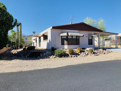 Pima County Manufactured Home For Sale: 5572 W Tumbling F Street