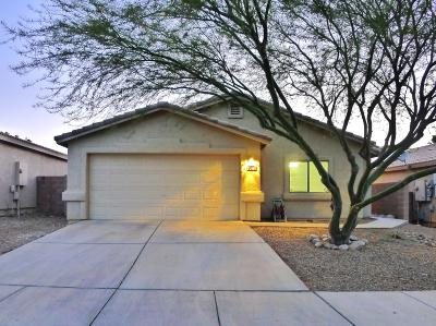 Pima County Single Family Home For Sale: 1285 N Wildcat Diers Road