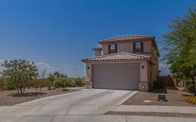 Pima County Single Family Home For Sale: 11105 E Vail Vista Court