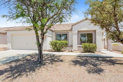 Pima County Single Family Home For Sale: 10269 E Gray Hawk Drive