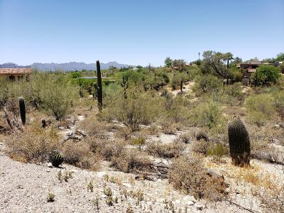 Tucson Residential Lots & Land For Sale: 5209 N Camino Real #80