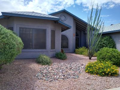 Tucson Single Family Home For Sale: 2641 W Camino Hornos