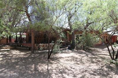 Single Family Home For Sale: 895 W Running Bird Lane