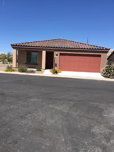 Pima County Single Family Home For Sale: 15950 S Avenida Canica