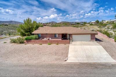 Cochise County Single Family Home For Sale: 391 N Gila Drive