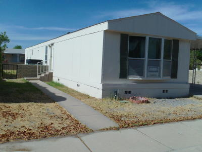 Pima County Manufactured Home For Sale: 1594 W Seabrooke Drive