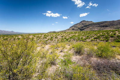 Tubac Residential Lots & Land For Sale: 171 Aliso Springs Road #1