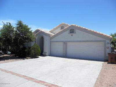 Pima County Single Family Home For Sale: 3771 W Meadow Briar Drive