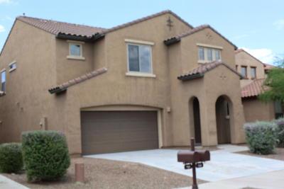 Pima County Single Family Home For Sale: 346 W Calle Matraca