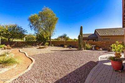 Pima County Single Family Home For Sale: 3404 N Sand Creek Court