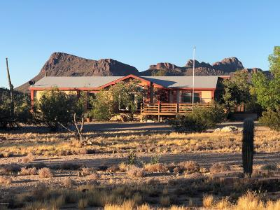 Pima County Manufactured Home For Sale: 10122 W Horse Mesa Trail