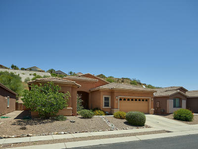 Tucson Single Family Home For Sale: 60710 E Eagle Heights Drive