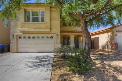 Tucson Single Family Home For Sale: 4191 E Sapphire Falls Drive