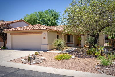 Pima County Single Family Home For Sale: 1493 E Tascal Loop