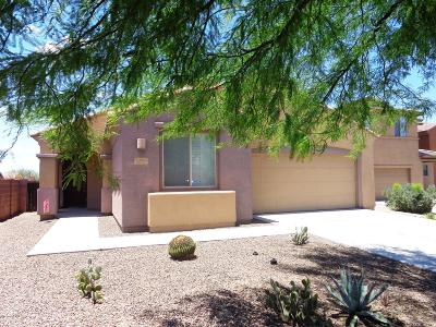 Marana Single Family Home For Sale: 12963 N Sabal Palm Way