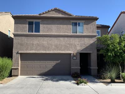 Tucson Single Family Home For Sale: 5731 S Ladyslipper Place