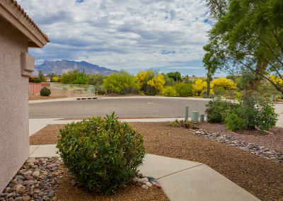 Pima County Single Family Home Active Contingent: 8723 N Lennon Place
