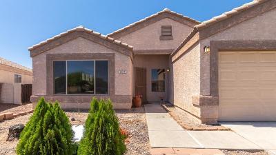 Tucson Single Family Home For Sale: 10144 E Paseo De Mejia