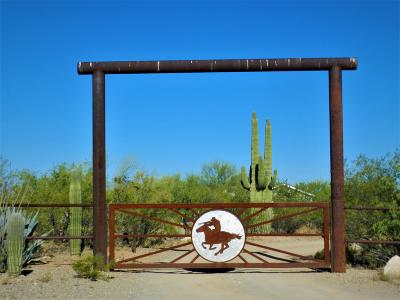 Pima County, Pinal County Manufactured Home For Sale: 18050 S Desert Saguaro Shadow Place