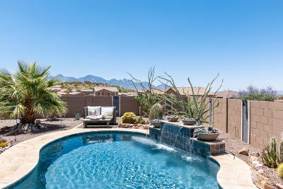Tucson Single Family Home For Sale: 39176 S Quick Trot Drive