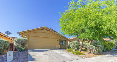 Tucson Single Family Home For Sale: 7331 E Laughing Tree Lane