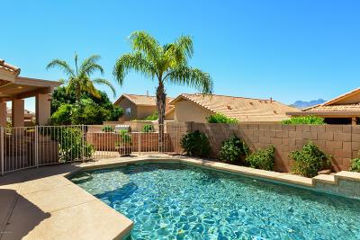 Tucson Single Family Home For Sale: 10267 E Buffaloberry Loop