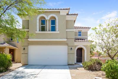Tucson Single Family Home For Sale: 4723 W Calatrava Lane