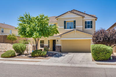 Tucson Single Family Home For Sale: 4920 E Chickweed Drive