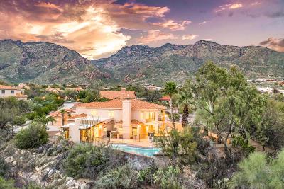 Tucson Single Family Home For Sale: 6480 E Placita Acambay