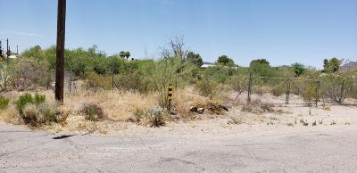 Tucson Residential Lots & Land For Sale: 1867 W Pueblo Vista Boulevard #1